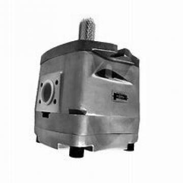 NACHI IPH-5B-50-21 IPH Pompe à engrenages