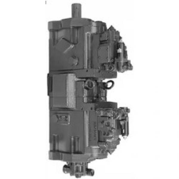 KAWASAKI 44081-60010 Pompe à engrenages #2 image