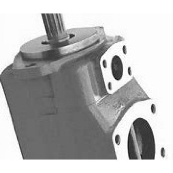 NACHI IPH-6B-125-21 IPH Pompe à engrenages #1 image