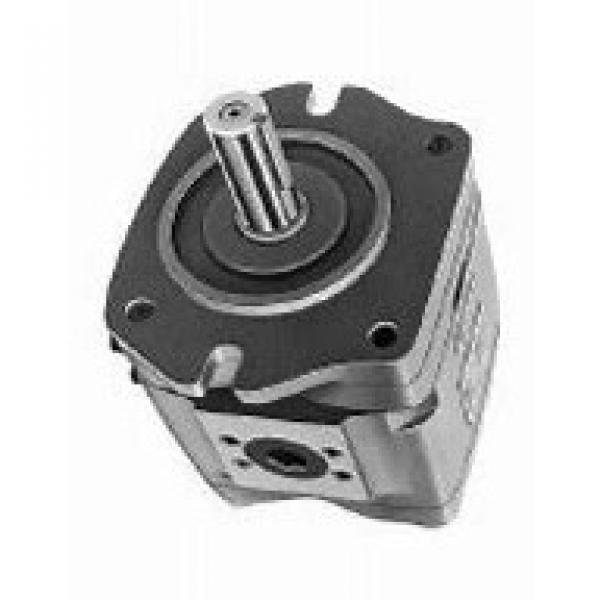 NACHI IPH-5B-40-21 IPH Pompe à engrenages #1 image