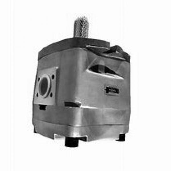 NACHI IPH-6B-80-21 IPH Pompe à engrenages #1 image