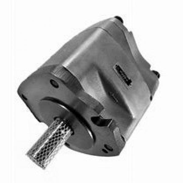NACHI IPH-6A-80-21 IPH Pompe à engrenages #1 image