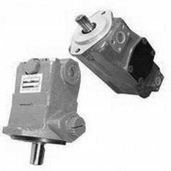 NACHI IPH-6B-100-21 IPH Pompe à engrenages #1 image