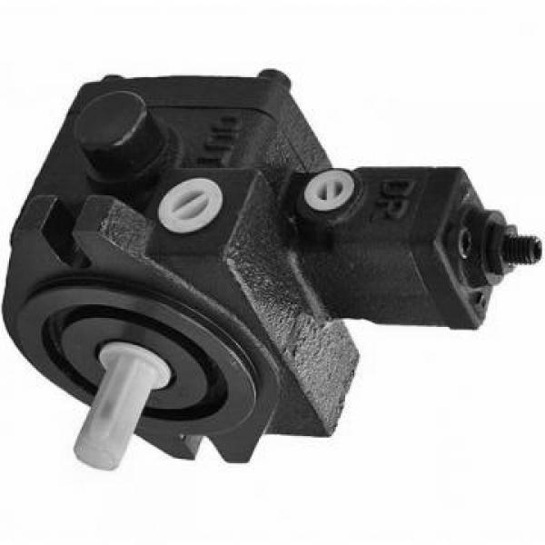 NACHI PVS-2B-45N0-12 PVS pompe à piston #1 image