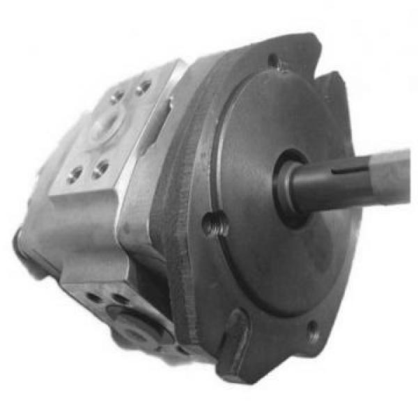NACHI PVS-2B-45N3-20 PVS pompe à piston #2 image