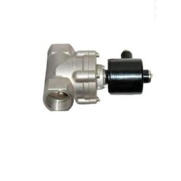 Vickers PV080R1K4A4NFDS+PGP505A0020CA1 PV 196 pompe à piston #1 image