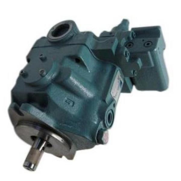 Vickers PV080R1K4L3NFFC+PV092R1L4T1NFF PV 196 pompe à piston #1 image