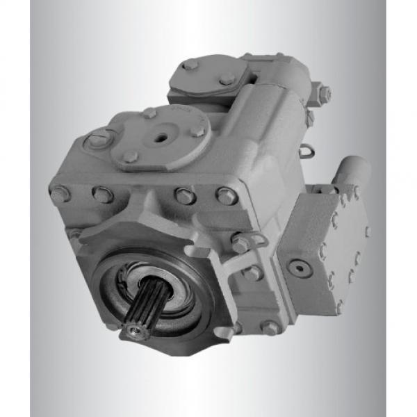 Vickers PV080R9K1T1NSLC4242K0197 PV 196 pompe à piston #1 image