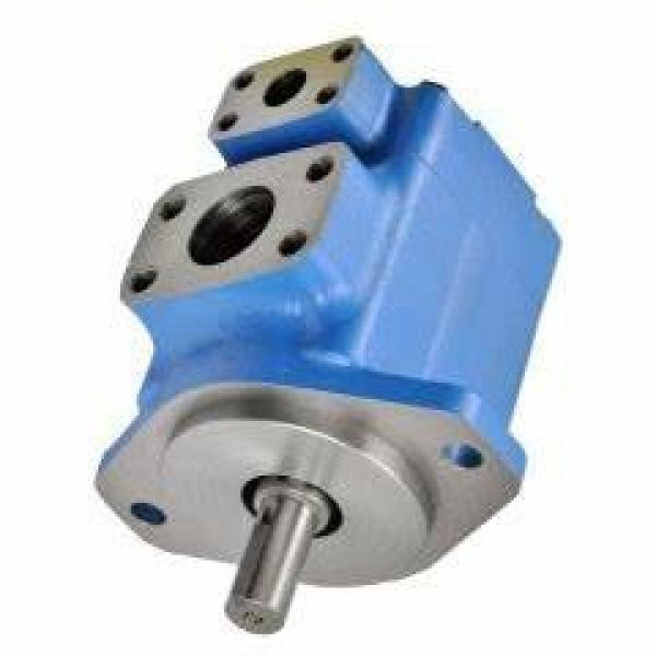 Vickers PV080R1L1T1NFFC4211 PV 196 pompe à piston #1 image