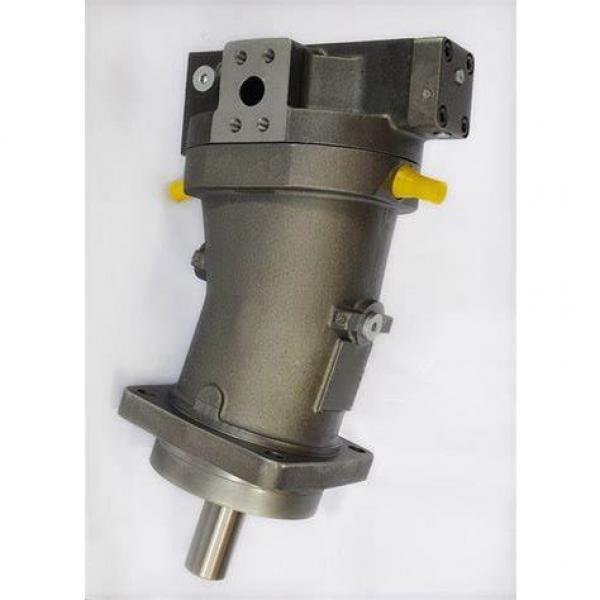 Vickers PV080R1K1T1NMLZ+PVAC2MCMNSJW35 PV 196 pompe à piston #1 image