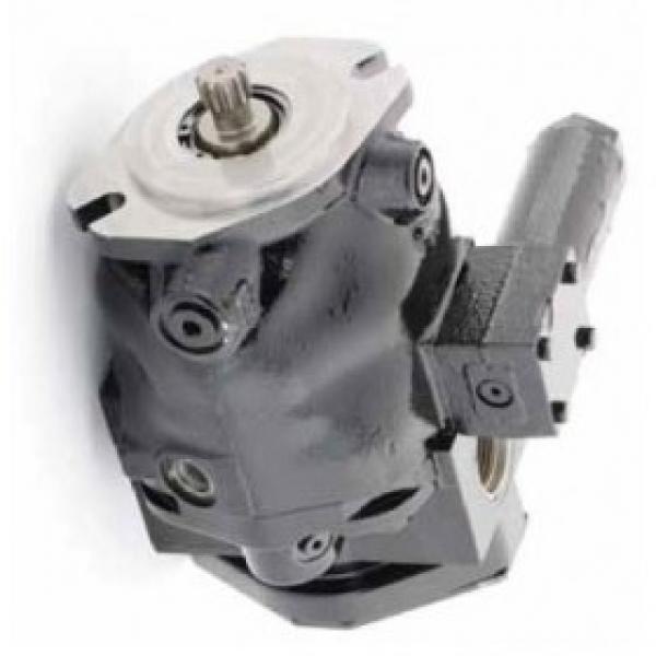 Vickers PV080R1K1T1NULZ+PVAC1ECMNSJW35 PV 196 pompe à piston #1 image